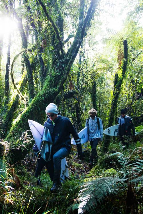 Fiordland (Part 1)