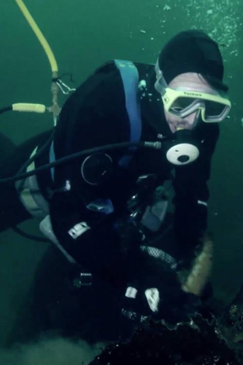 Dive Fishermen