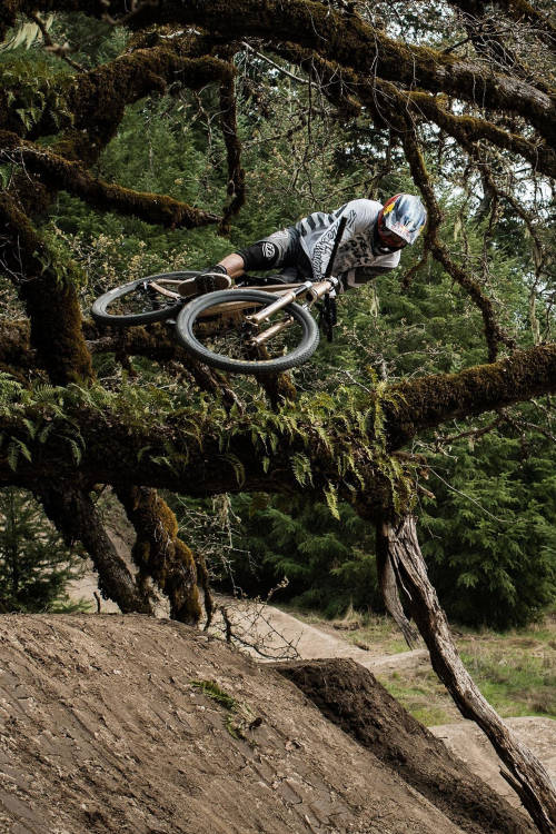 Brandon Semenuk Part 3