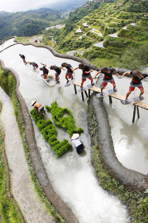 Wakeskating Rice Terraces
