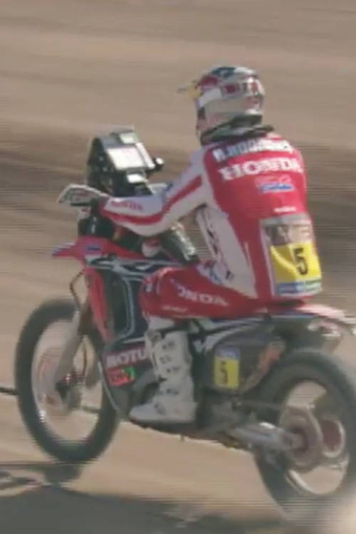 On the Dakar rails in 2015