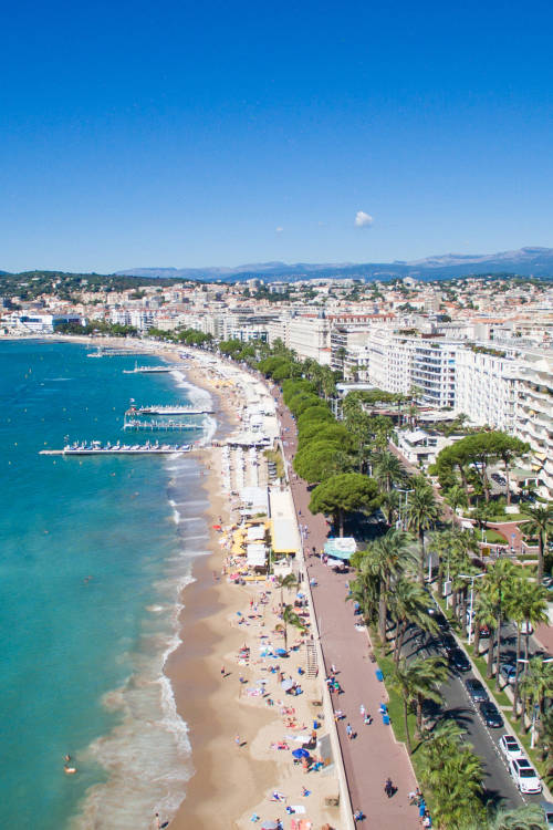 Cannes: Jewel of the Mediterranean