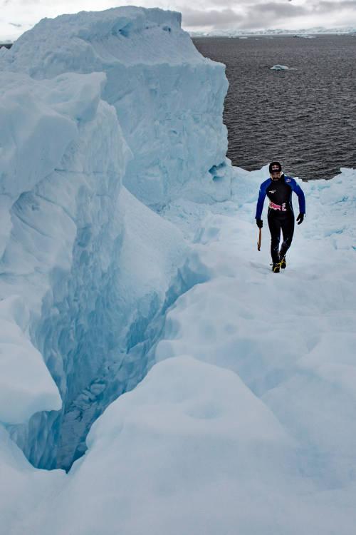 Antarctic Dive