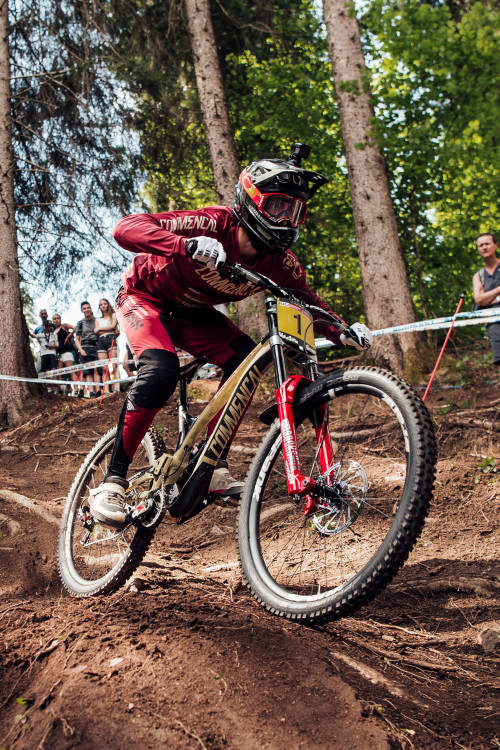 Men's DH 1st place run – Val di Sole