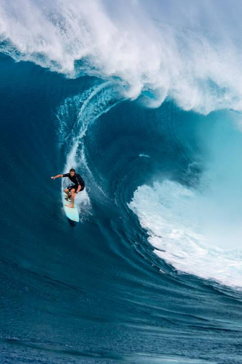 Maui's finest