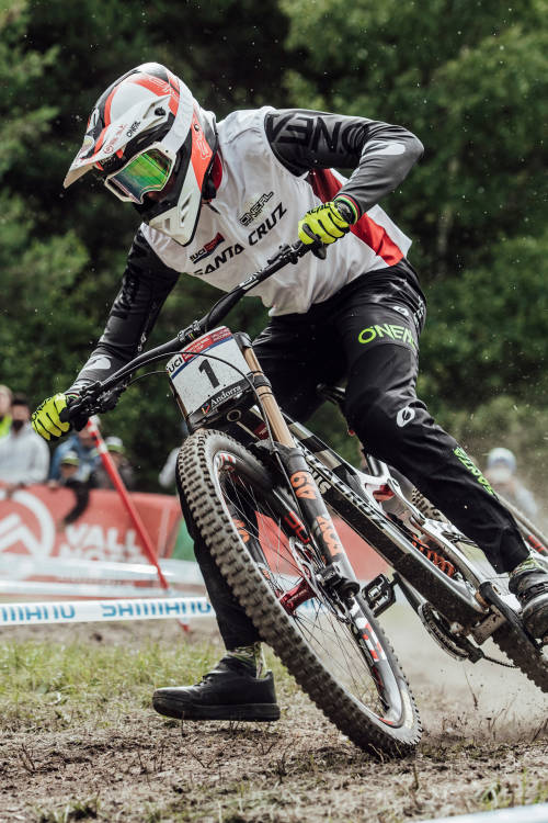 Greg Minnaar Profile