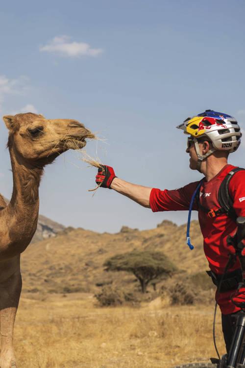 Chasing Camel Trails