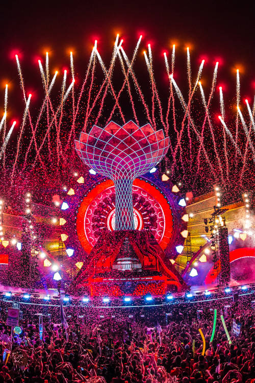 Listed: Electric Daisy Carnival