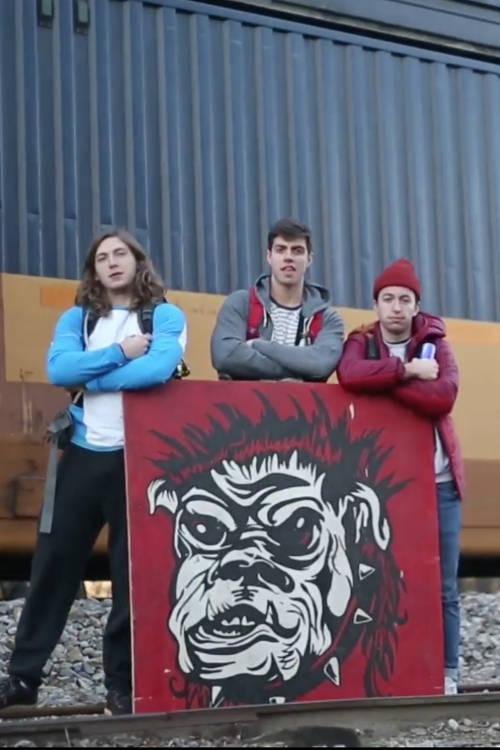 The Dawgs: Team Profile