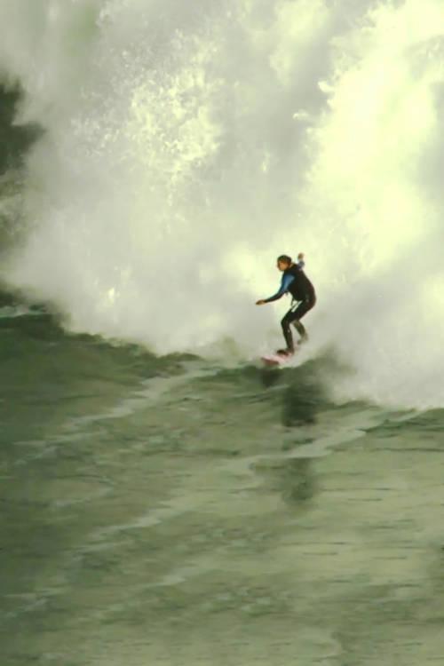 A Surf Survival Tale