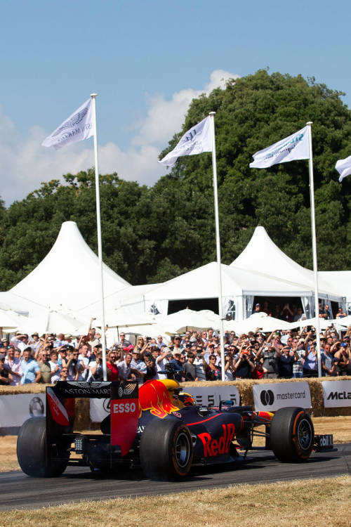 Inside the festival
