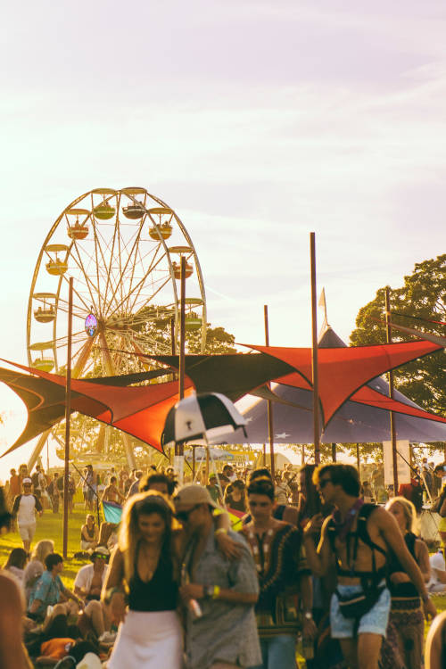 Listed: Bonnaroo